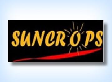 Suncrops